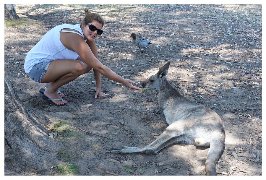 Australie2013-0082